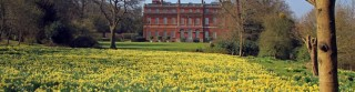 National Trust Clandon - Picture by Andy Scott