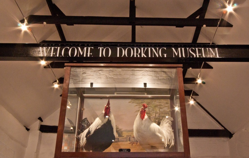 Dorking Museum - Picture from Dorking Museum